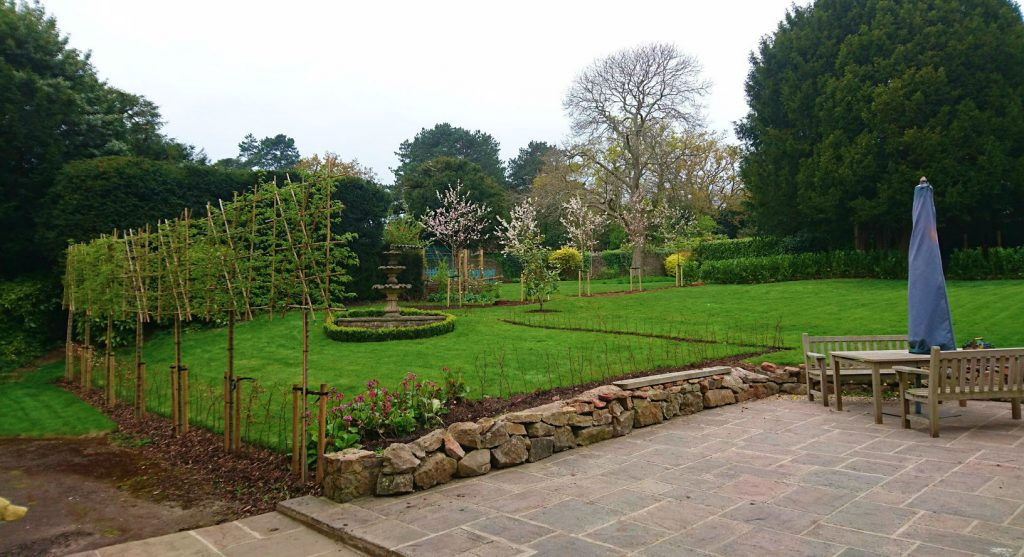 Pleached and beech